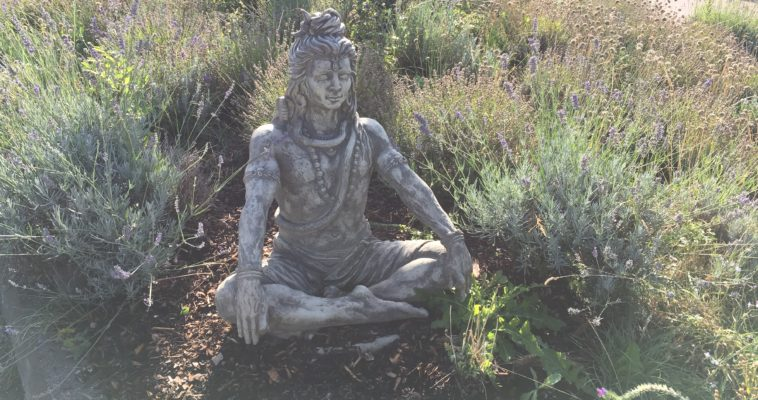 Shiva, Gott der Sadhus